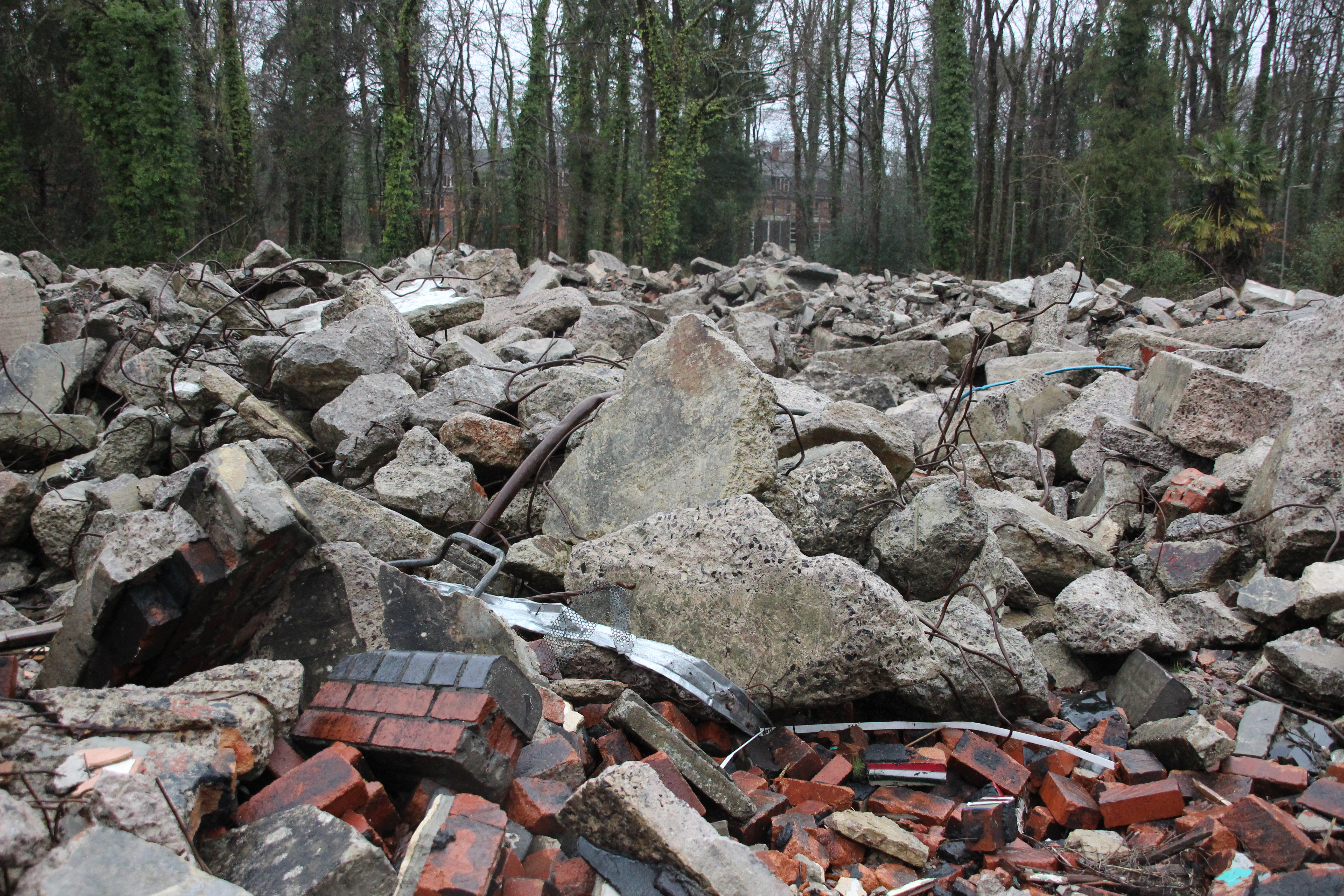 """beneath the rubble essay """"a lot of schools collapsed so people are searching for children that may be still alive beneath the rubble, but in terms of emergency relief from official agencies i've really seen nothing,"""" herz told us."""